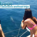 Guide about catamaran excursions and boat trips