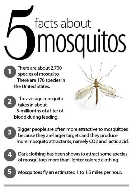 Stechmücken-Fakten
