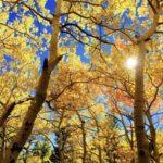 Malaga in October and November