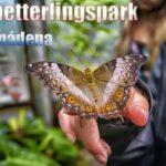 Schmetterlingspark in Benalmadena