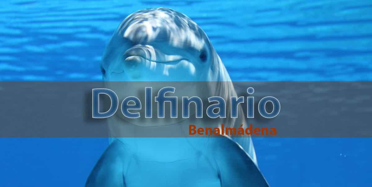 delfinario de Benalmádena