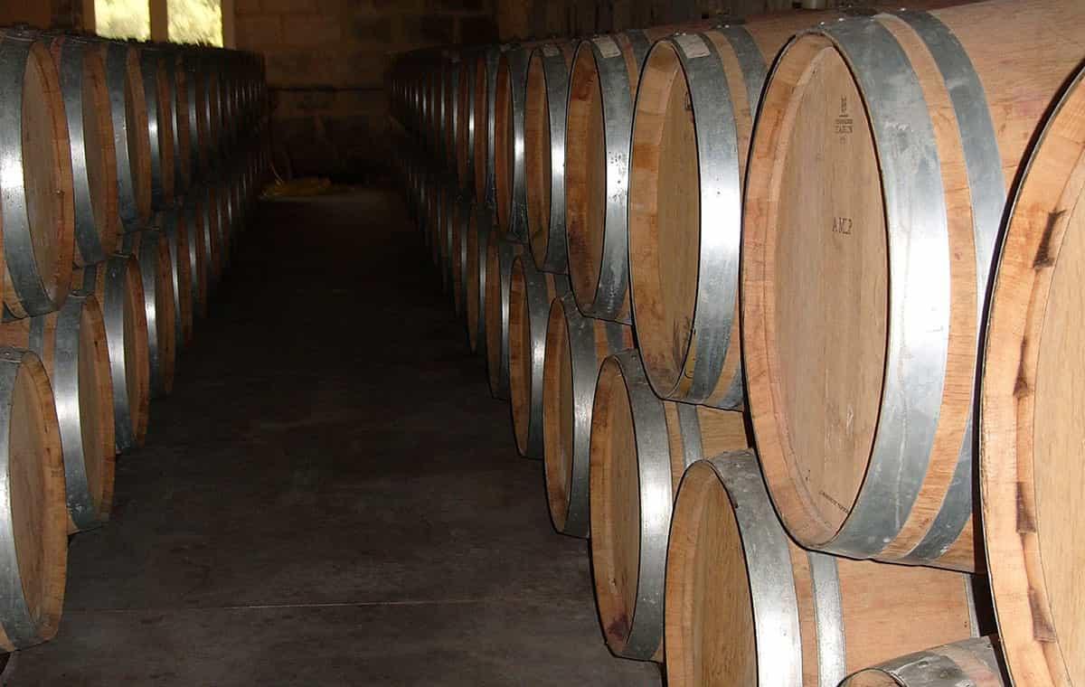 Winery in Malaga