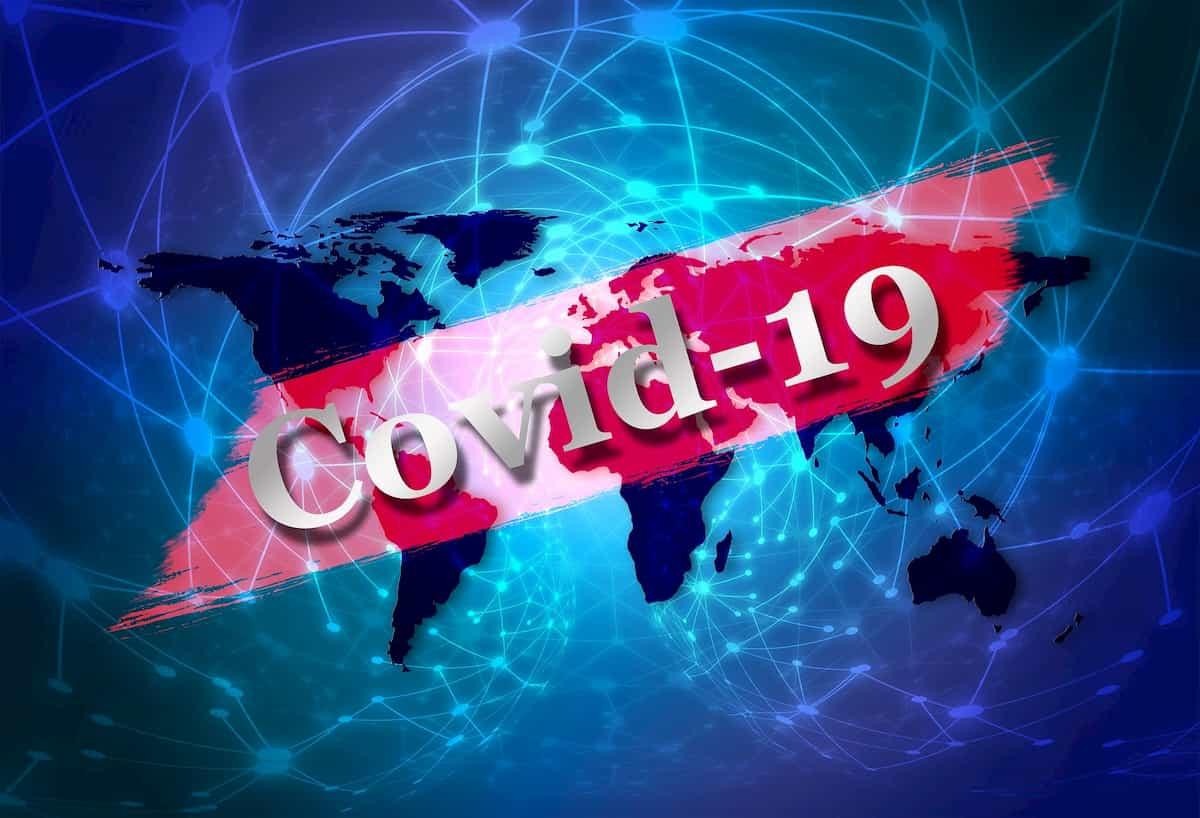 Fases Covid-19
