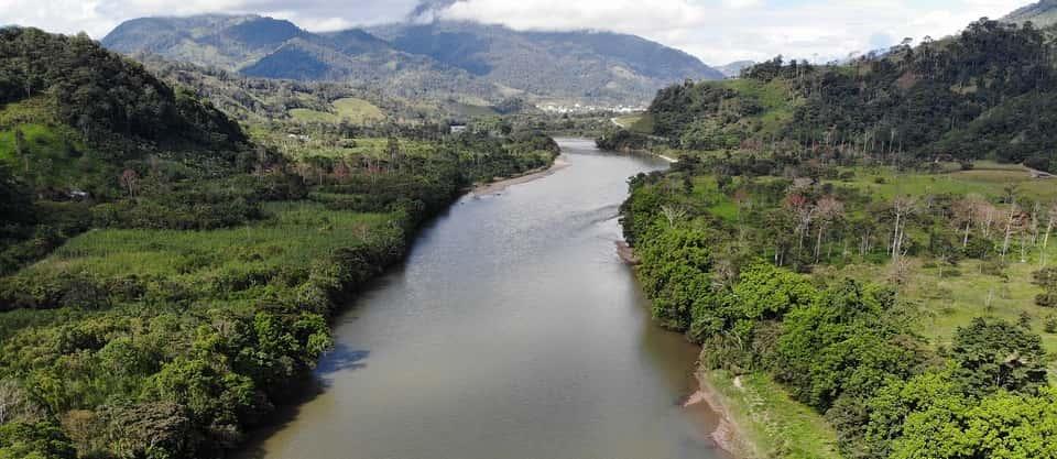 Amazon landscape