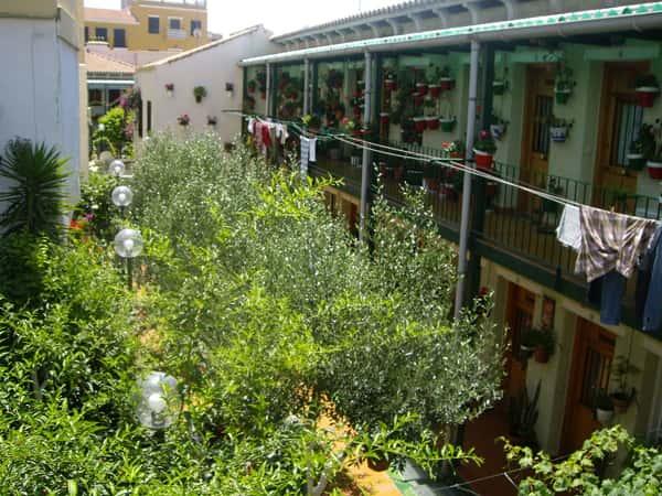 Corralon in La Trinidad, Malaga