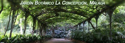Jardín Botánico de la Concepción en Málaga