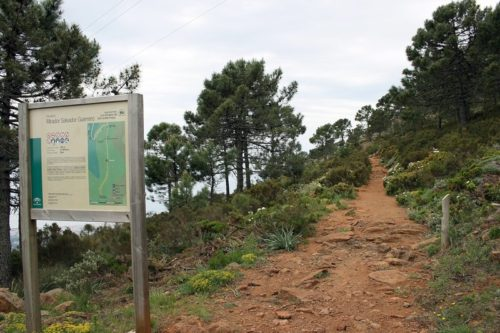 Sierra Bermeja, easy hiking in Malaga