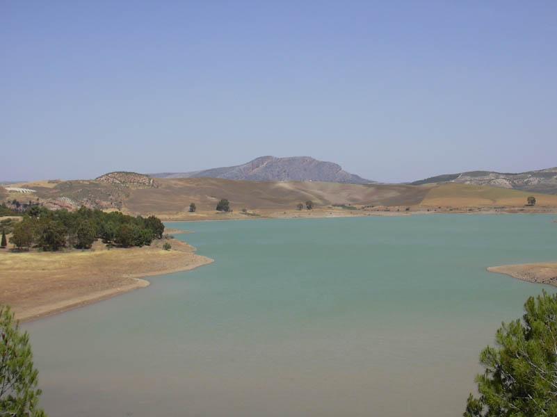 El Chorro  Swamp Picture - Photo 2