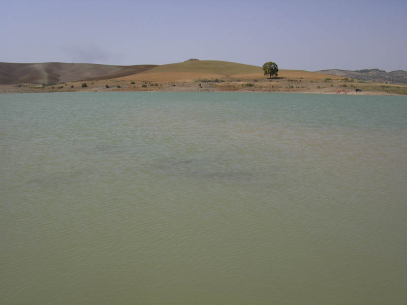 El Chorro  Swamp - Water picture - Photo 26