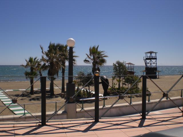 Estepona beach and palms