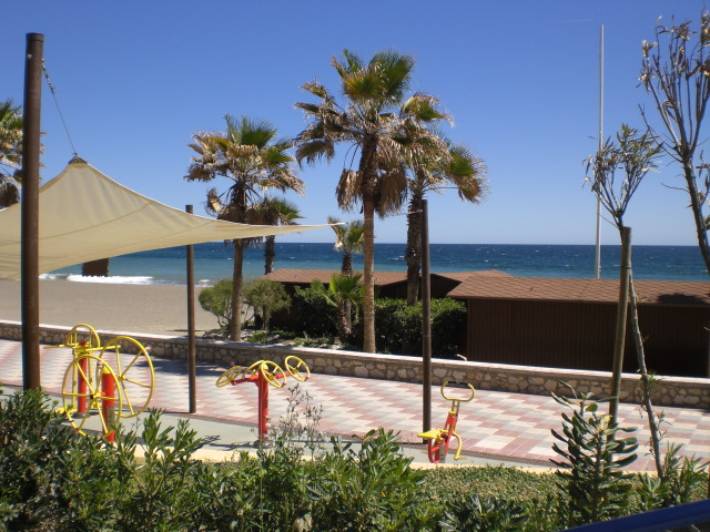 Estepona Promenade and palms 7