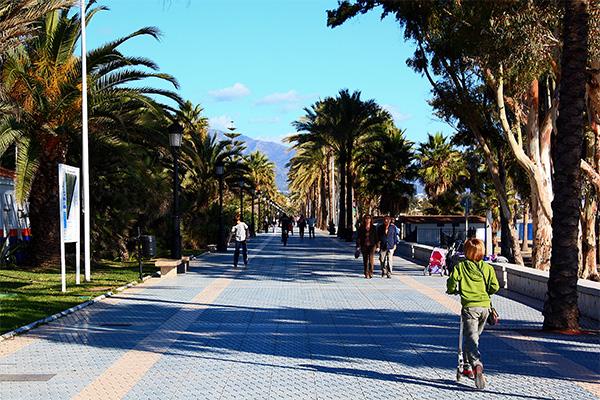 Guadalmina promenade and palms - May 3, 2016