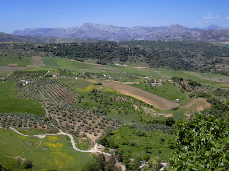 Ronda & White Villages