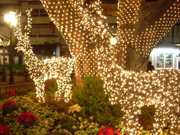 Fuengirola at Christmas 3