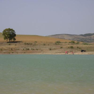 Beautiful landscape - Photo 23