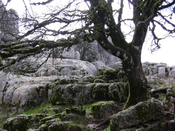 Torcal of Antequera 26