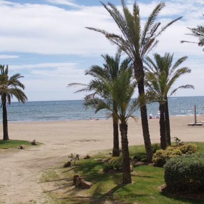 Benalmadena beaches and palms