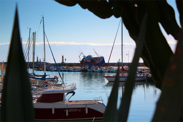 Estepona port boats