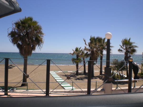 Estepona beach and palms 3