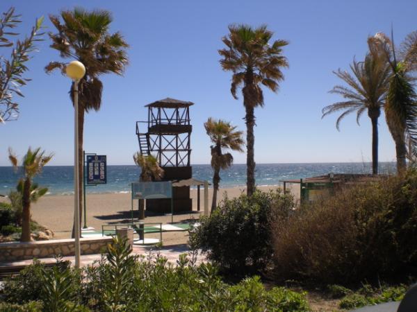 Estepona lifeguard tower and palms