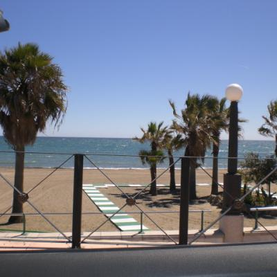 Estepona beach and palms 3