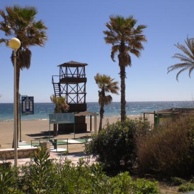 Estepona lifeguard tower and palms