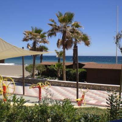 Estepona Promenade and palms 7