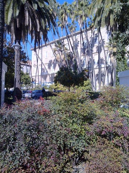 Malaga gardens 3