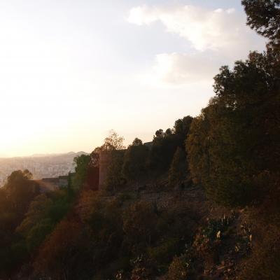 Malaga Sightseeing 7