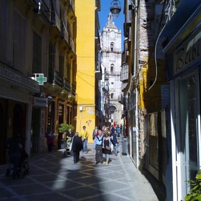 Malaga Sightseeing 12