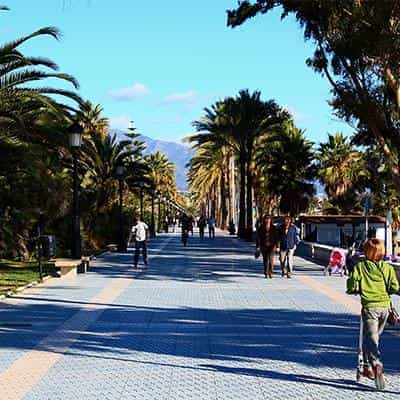 Guadalmina promenade and palms