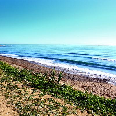 Natural beach in San Pedro 16