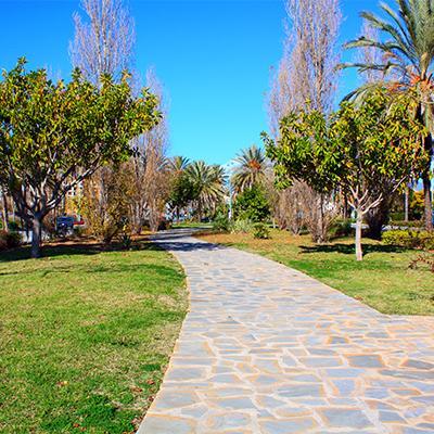 Park in San Pedro 18