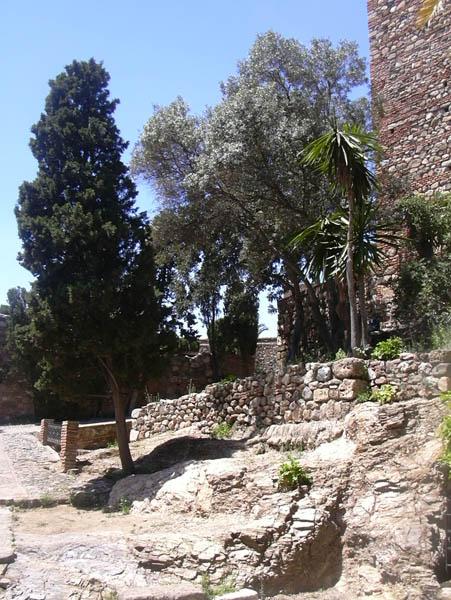 Alcazaba 9