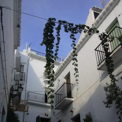 Frigiliana picture 8