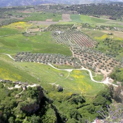 Ronda landscapes 4