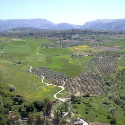 Ronda landscapes 40